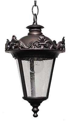 Melissa Parisian Elegance 1-Light Outdoor Hanging Lantern; Aged Silver