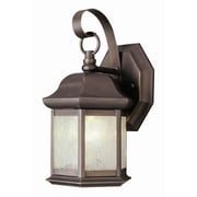 TransGlobe Lighting 1-Light Outdoor Wall Lantern; Weathered Bronze