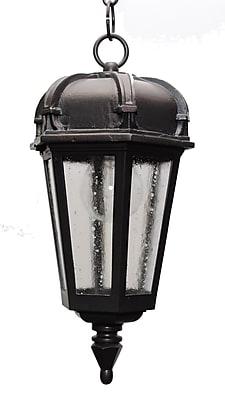 Melissa Kiss Series 1-Light Outdoor Hanging Lantern; Black