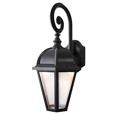 Melissa Kiss Series 1-Light Outdoor Wall Lantern; Aged Silver