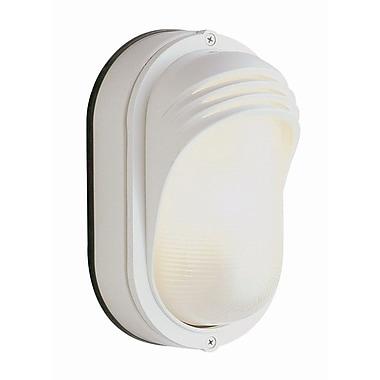 TransGlobe Lighting 1-Light Outdoor Flush Mount; White