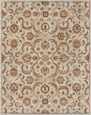 Continental Rug Company Serene Light Blue/Beige Area Rug; 3'6'' x 5'6''