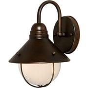 Forte Lighting 1-Light Outdoor Barn Light; Desert Stone