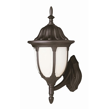 TransGlobe Lighting Outdoor 1-Light Outdoor Sconce; Rust