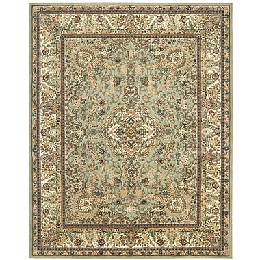 Nourison 2000 Hand-Tufted Light Green Area Rug; 7'9'' x 9'9''