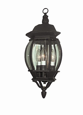 Woodbridge Basic 3-Light Outdoor Hanging Lantern; Powder Coat Black
