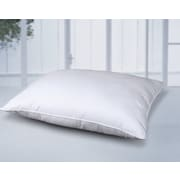 Cotton Loft All Natural Cotton Pillow; Jumbo Pillow: 20'' x 28''
