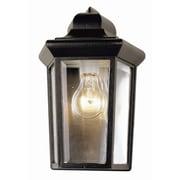 TransGlobe Lighting 1-Light Outdoor Flush Mount; Black