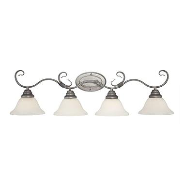 Millennium Lighting 4-Light Vanity Light; Rubbed Silver