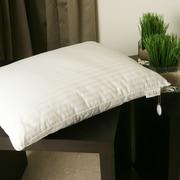 Silx Bedding Silk-Filled Single Down Alternative Pillow; Boudoir