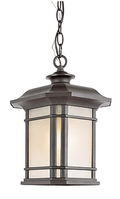 TransGlobe Lighting Corner Windows 1-Light Outdoor Hanging Lantern; Black WYF078275800585