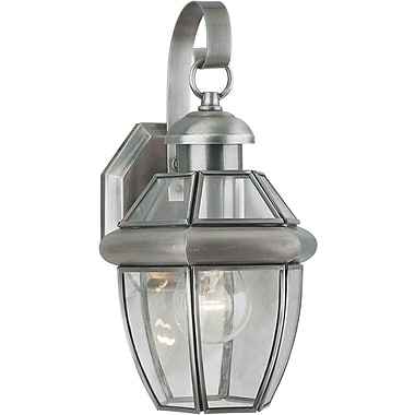 Forte Lighting 1-Light Outdoor Wall Lantern; Antique Pewter