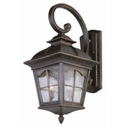 TransGlobe Lighting Outdoor Wall Lantern; 30'' H x 13'' W