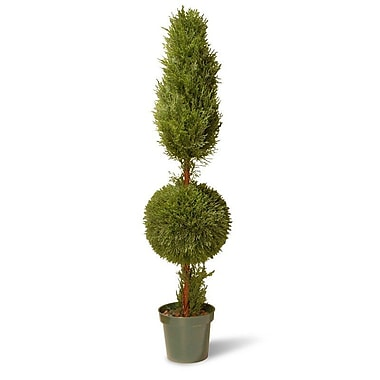 National Tree Co. Juniper Cone Ball Round Topiary in Pot