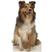 Advanced Graphics Animals Collie Dog Wall Mural; Cardboard Standup