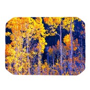 KESS InHouse Aspen Trees Placemat