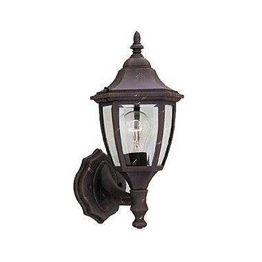 Designers Fountain Budget Cast Aluminum 1-Light Outdoor Wall lantern; Autumn Gold