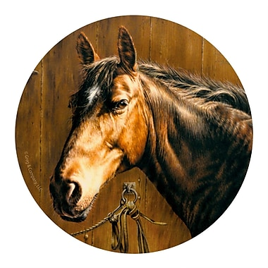 Thirstystone Horse Portrait Coaster (Set of 4)