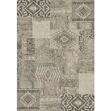 Dynamic Rugs Imperial Light Gray Area Rug; Rectangle 5'3'' x 7'7''