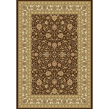 Dynamic Rugs Ancient Garden Chocolate/Ivory Area Rug; 7'10'' x 11'2''
