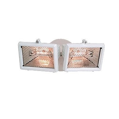 Designers Fountain 2-Light Outdoor Floodlight; White