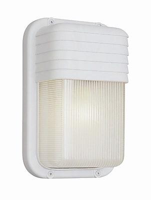 TransGlobe Lighting 1-Light Outdoor Flush Mount; Satin Aluminum