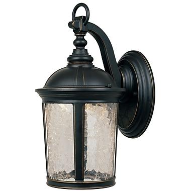 Designers Fountain Winston 1-Light Outdoor Wall Lantern; 9'' W