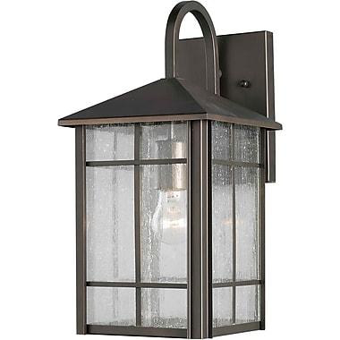 Forte Lighting 1-Light Outdoor Wall Lantern; 14.5'' H x 7'' W x 8.5'' D