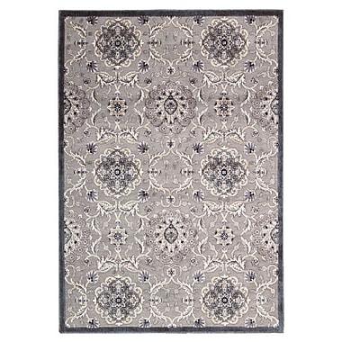 Nourison Graphic Illusions Gray Area Rug; 7'9'' x 10'10''