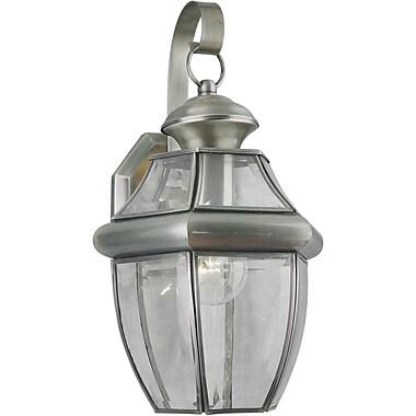 Forte Lighting 1-Light Outdoor Wall Lantern; Antique Pewter