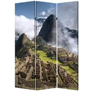 Screen Gems 72'' x 48'' Mach Pichurim 3 Panel Room Divider