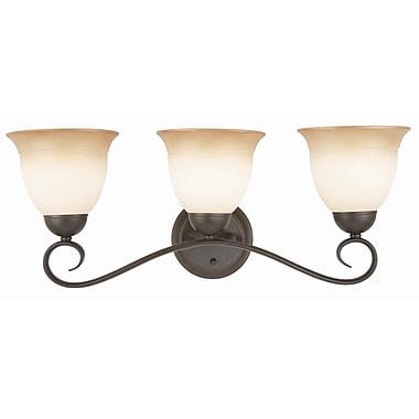 Design House Cameron 3-Light Vanity Light