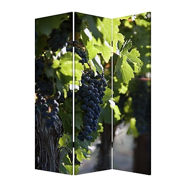 Screen Gems 72'' x 48'' Wine Country 3 Panel Room Divider