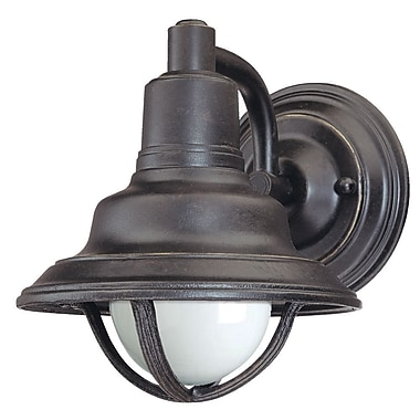 Dolan Designs Bayside 1-Light Outdoor Barn Light; 7.5'' x 6.5''