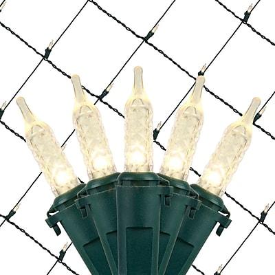 Wintergreen Lighting 100 Light Net LED Light; Cool White