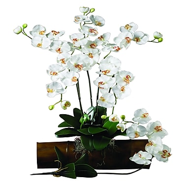 Nearly Natural Phalaenopsis Stem in White (Set of 12)