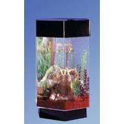 Midwest Tropical Fountain Aqua 8 Gallon Scape Hexagon Aquarium Kit