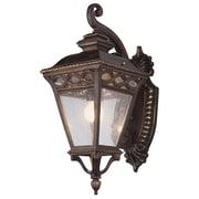 TransGlobe Lighting 2-Light Outdoor Wall Lantern