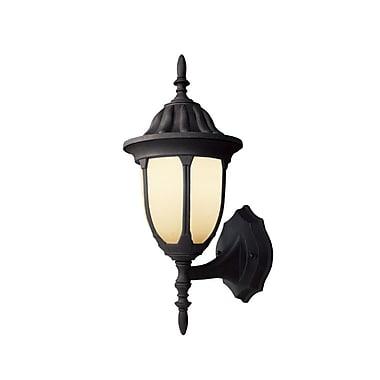 Woodbridge Basic 1-Light Outdoor Sconce