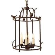 JVI Designs Bird Cage 4-Light Outdoor Pendant; Matte black