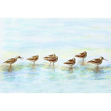Betsy Drake Interiors Coastal Avocets Doormat; Rectangle 30'' x 50''