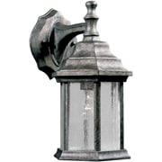 Forte Lighting 1-Light Outdoor Wall Lantern; River Rock