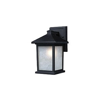 Z-Lite Waterloo 1-Light Outdoor Wall Lantern; Black