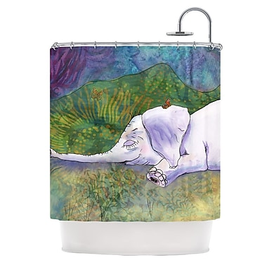 KESS InHouse Ernie's Dream Shower Curtain