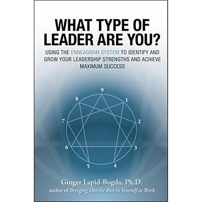 What Type of Leader Are You? Ginger Lapid-Bogda Paperback
