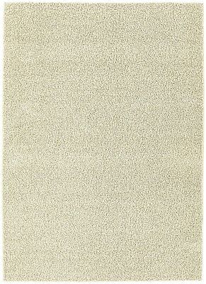 Garland Rug Beechmont Shazaam Indoor/Outdoor Area Rug; 5' x 8'
