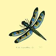 Betsy Drake Interiors Dragonfly Coaster (Set of 4)