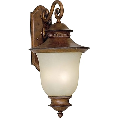 Forte Lighting 3-Light Outdoor Wall Lantern; Rustic Sienna