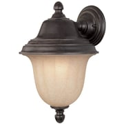 Dolan Designs Helena 1-Light Outdoor Sconce