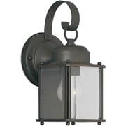 Forte Lighting 1-Light Outdoor Wall Lantern; Small